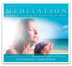 Journey into Meditation: Guided Meditations for Relaxation, Insight and Renewal - Brainwave Training for Awakening the Mind by Lisa Guyman and James Ripley